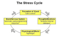 perceived stress levels and stress management Hospital nurses experience stress specific to their occupation, due to shift work, intense workload, and unsupportive management current literature suggests coloring.